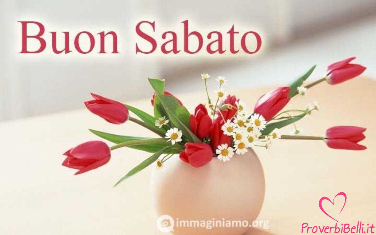 Immagini Buongiorno Sabato per Whatsapp